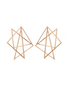 Irregular hollow geometric earrings